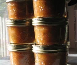 green tomato and pear chutney - Foter 270037030_c39d0b5fb7