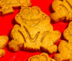 Quick and easy gingerbread men frog