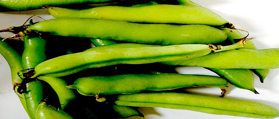 Easy Broad Beans Risotto